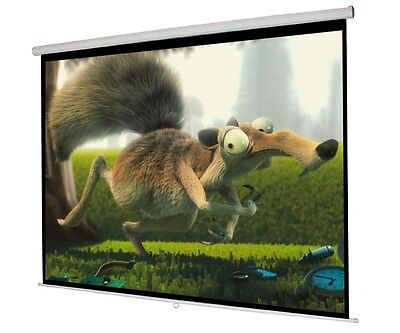 """119"""" Manual Projector Projection Screen 84""""X84"""" Pull Down Home Movie Theater"""