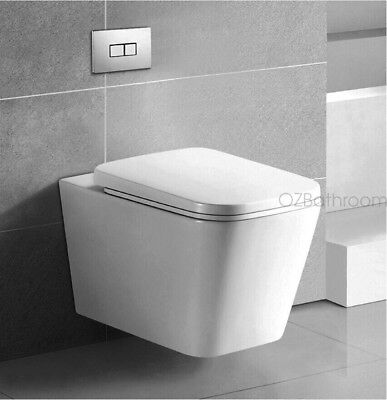 Wall Hung toilet suite Steel framed inwall concealed cistern