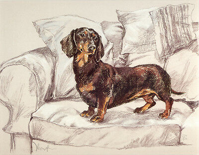 Dachshund Smooth Haired German Sausage Dog Art Limited Edition Print