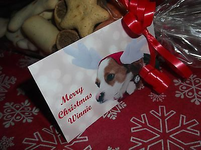 Personalised Dog Treat Cones Birthday/christmas Top Quality Treats Used