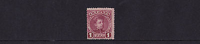 Spain - 1901-05 1p Claret - Mint - SG 304 - SEE NOTES
