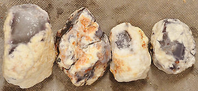 Mexican Purple Chalcedony Nodules Cutting Rough 4 pieces 1 pound