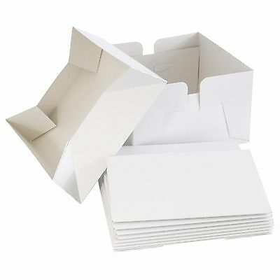 "10"" White Folding Cake Box with Lid - Bulk 5 Pack Cake Boxes"