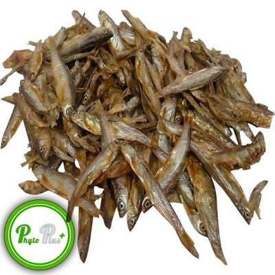 Phyto Plus Dried Whole Fish Turtle/Terrapins,Reptiles,Oscars food All Sizes