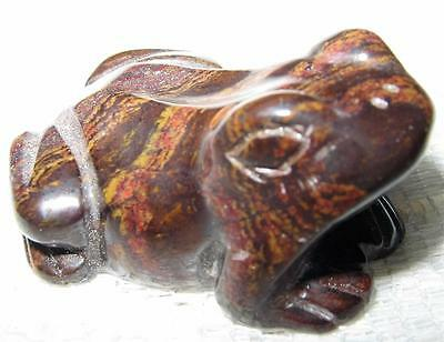 LOVELY NEW MUGGLESTONE (Tiger Iron) Polished FROG - GREAT DETAIL - A+ GRADE