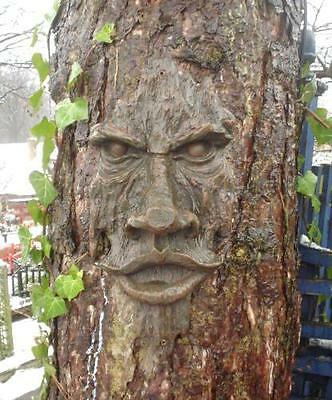 Realistic wooden Carved Garden Tree Face Mystical Face Garden Tree Halloween