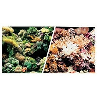 Marina Double Sided Background 30cm Marine Reef/Coral Scene #10D472
