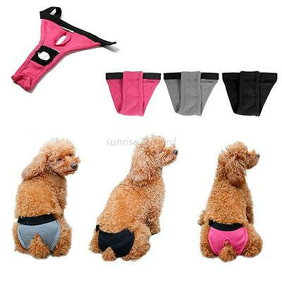 Hot Small Puppy Pet Dog Solid Short Striped Sanitary Diaper Underwear Panty Pant