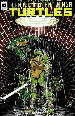Tmnt Ongoing #63 1:10  Incentive Variant Cover
