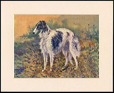Borzoi Standing Dog Lovely Print Mounted Ready To Frame