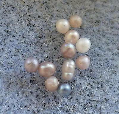 Extremely Rare Natural Sea of Cortez Rainbow Lipped Oyster Pearls, 2 to 3 mm