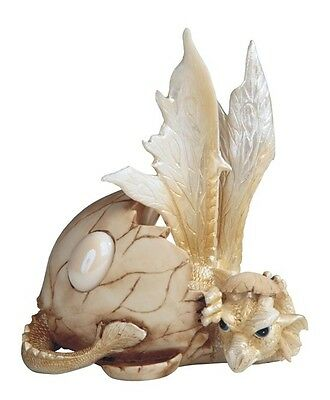 Birth Stone Dragon October Baby Hatching from Egg Hatchling White Opal GSC71529