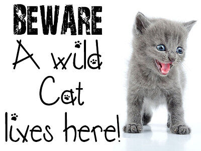 Cute Grey Cat/kitten Funny Warning Door Sign / Plaque Great For Pet Lovers Xmas