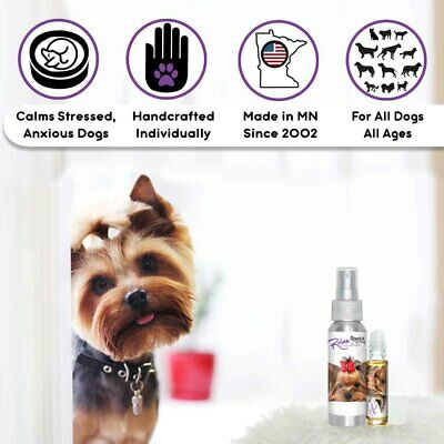 Yorkshire Terrier Relax Dog Aromatherapy For Thunder & Firework Fear, Anxiety