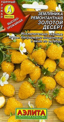 """Strawberries remontant """"Golden dessert""""  Russian High Quality seeds"""