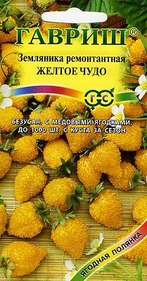 """Strawberries remontant """"Yellow MIRACLE""""  Russian High Quality seeds"""