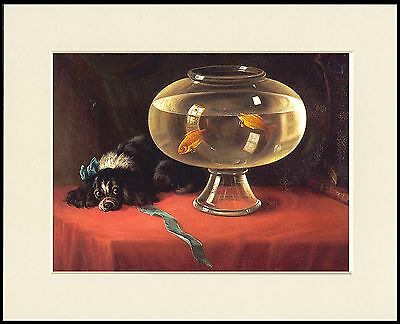 Cavalier King Charles Spaniel Dog Watching Goldfish Lovely Print Ready To Frame