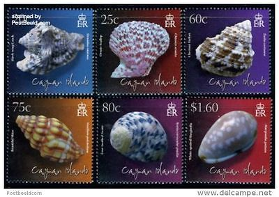 Cayman Islands 2010  Shells MNH