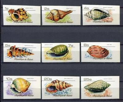 27528) GUINEA 1977 MNH** Nuovi** Shells Conchiglie 9v Imperforated