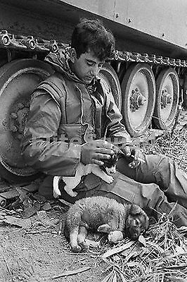 Vietnam War Photo member of A Troop 1st Cav  23rd Infantry whit dogs 537
