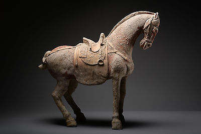 Ancient Chinese Terracotta Sui Dynasty Horse - 600 AD
