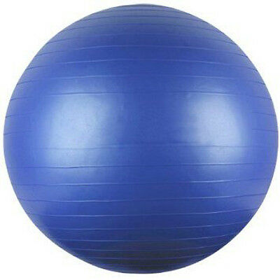 Exercise Fitness Balance 65cm Ball for GYM Yoga Pilates Pregnancy Birthing swiss