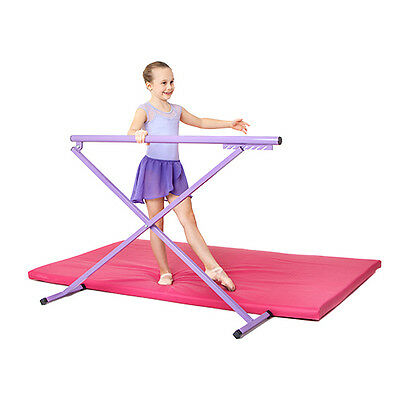 Preorder Delivery 15th Dec - Purple Metal Fold Ballet Barre Training Gymnastics