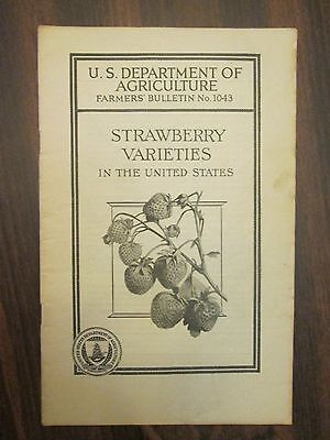 U.S. Department of Agriculture Farmer's Bulletin #1043 Strawberry Varieties 1926