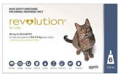 Revolution For Cats 2.6-7.5kg Blue 6 pack - NEW