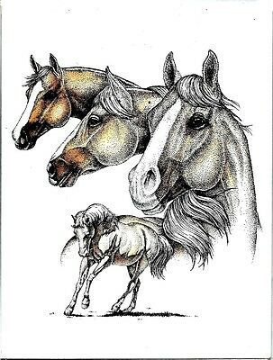 Horses, Horses& More Horses/Gorgeous PALOMINO Notecards NEW/SEALED Sale!