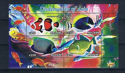 Bloc feuillet neuf ** MNH - Malawi 2011 - Poissons exotiques Exotic fishes