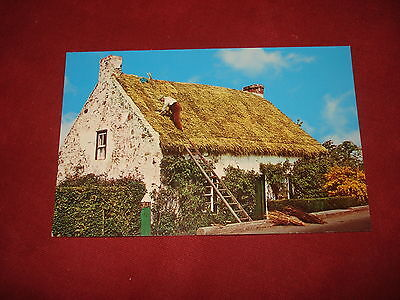 VINTAGE NORTHERN IRELAND: Thatched cottage colour