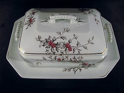 Antique Henry Alcock & Co. Semi Porcelain Hawthorn Tureen & Underplate ca. 1887
