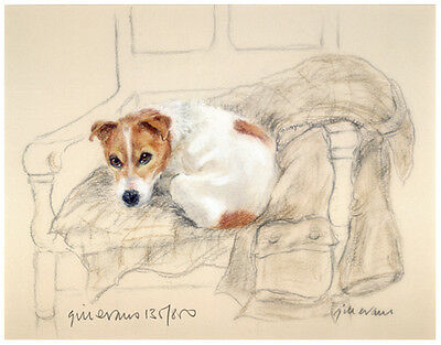 JACK RUSSELL TERRIER JRT DOG LIMITED EDITION PRINT - On His Masters Jacket