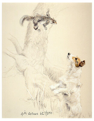JACK RUSSELL TERRIER DOG ART LIMITED EDITION PRINT - Grey Squirrel up a Tree