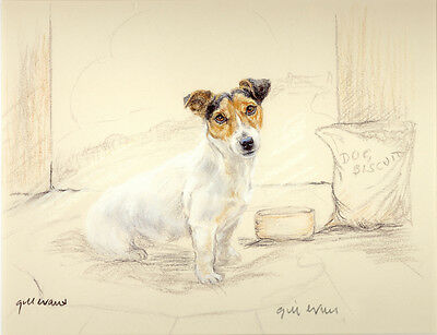 JACK RUSSELL TERRIER DOG LIMITED EDITION PRINT - Artist Proof # 18/85 - biscuits