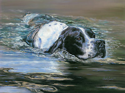 "POINTER ENGLISH DOG FINE ART LIMITED EDITION PRINT ""The Swimmer"" Amelia Siddle"