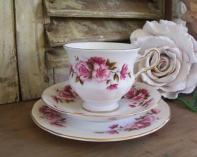 Vintage Queen Anne Cup Saucer & Plate Trio Shabby Pink French Blossom