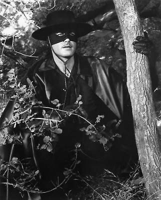 Zorro / Guy Williams 5x7 Television Memorabilia FREE US SHIPPING