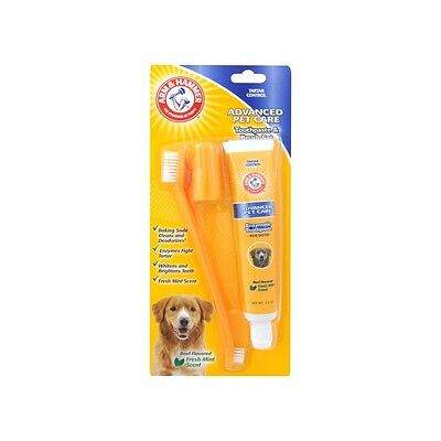 Arm and Hammer Toothpaste and Brush Set Beef Dog Set
