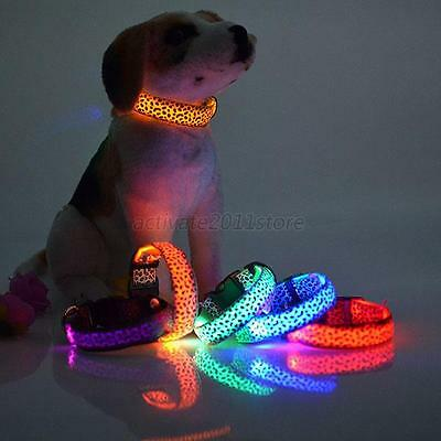 Safety LED Night Light Up Puppy Pets Dogs Nylon LED Lamp Collars Leopard Hot