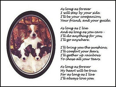 """Beautiful PAPILLON print """"AS LONG AS FOREVER.."""" art poem dog puppy NEW!"""