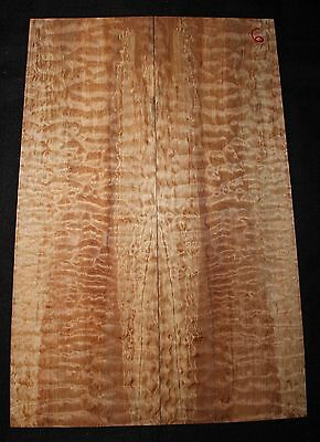 Spalted quilted maple guitar top. Very nice figure and color.