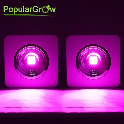 2pcs 200w led grow light reflector cup+COB Chip For Indoor medical plant lamp