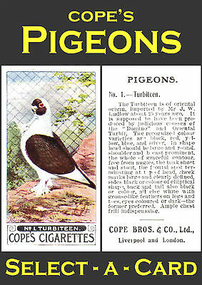 Cope's PIGEONS - Select-A-Card