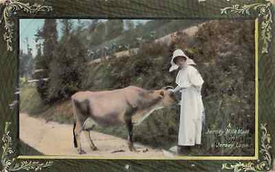 A Jersey Milk Maid in a Jersey Lane posted1909