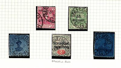 Mafeking & Zululand Stamp Collection Valuable Mint & Used Lot on Album Pages