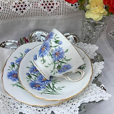 ROYAL VALE BONE CHINA 1960s TRIO SET CUP SAUCER PLATE BLUE CORNFLOWER 7513 MULT