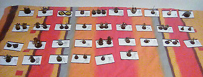 D&D minis, 47 miniatures, Dungeons & Dragons, Wizards of the Coast