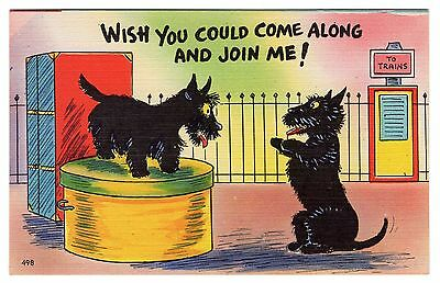 Scottish Terrier Dogs At Railway Station Old Comic Art Postcard